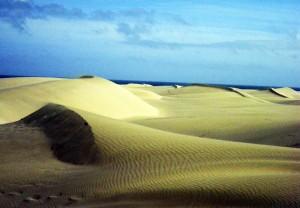 Dunas en Maspalomas (Gran Canarias)
